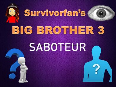 Big brother 3