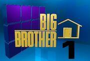 Blog bigbrother12 logo
