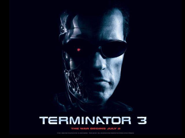 File:54 Terminator3 RiseofMachines ArnoldSchwarzenegger freemovies desktopwallpaper l.jpg