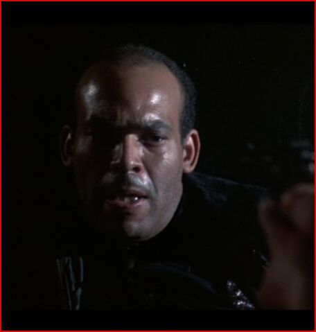 File:Cop in Alley.JPG