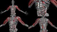 Hybrid-Endo- and-Vascular-System