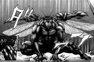 Terraformar spreading his wings