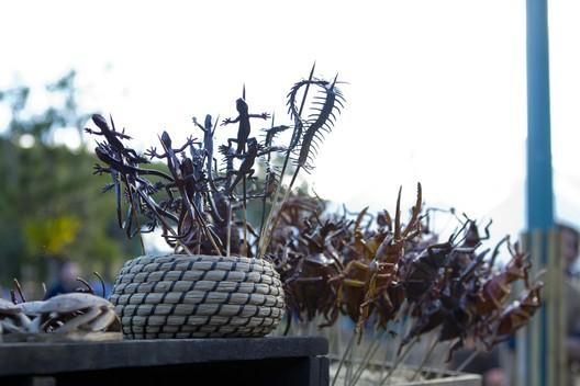 File:Terra Nova Market bugs and lizards.jpg