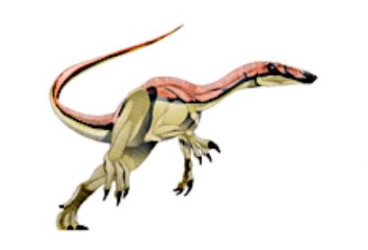 File:Nqwebasaurus-1.jpg