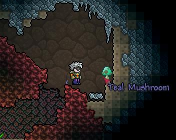 Teal Mushroom Terraria Wiki Fandom Powered By Wikia