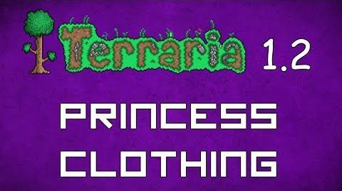 Princess Clothing - Terraria 1