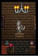 File:Cat .jpg