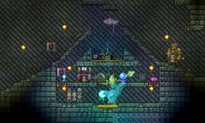Paladin Lava Trap