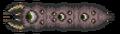 Pienoiskuva 24. joulukuuta 2012 kello 07.49 tallennetusta versiosta