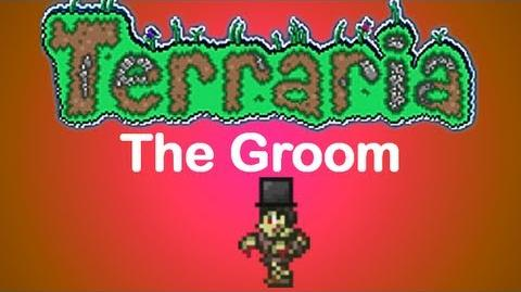 Terraria - The Groom Top Hat