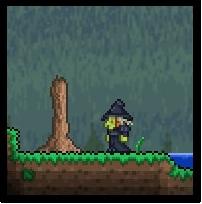 File:Terraria witch.jpg