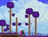 New-corrupt-trees
