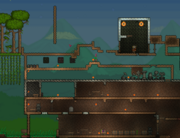 In Terraria my hosw