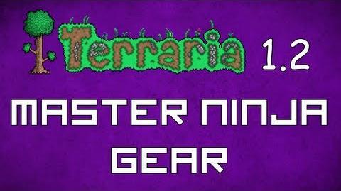 Master Ninja Gear - Terraria 1