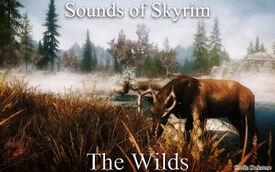 Sounds of Skyrim - The Wilds - Title
