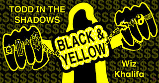 Black and Yellow by the butterfly