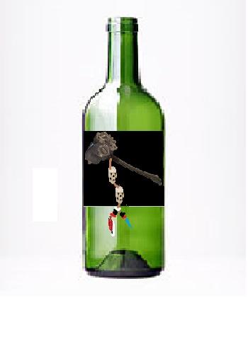 File:Bottle skin 2.jpg