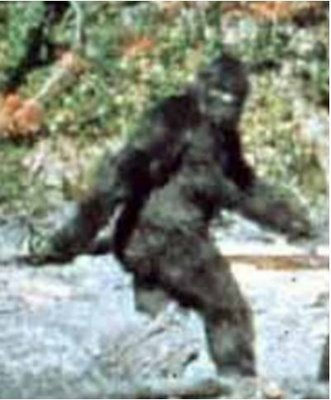 File:Grindstone-Acquires-Bigfoot-County-North-American-Rights.jpg