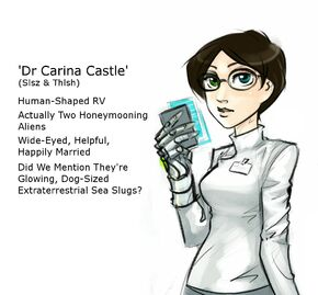 Carina castle page main
