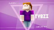 S17 - Tybzi