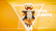 S17 - Tofuu