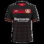 Bayer 04 Leverkusen 2016–17 home