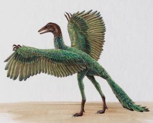 File:Archaeopteryx.jpg
