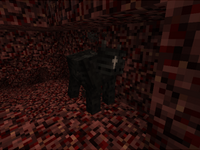Wither cow