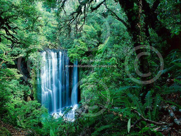 File:NZ4.jpg