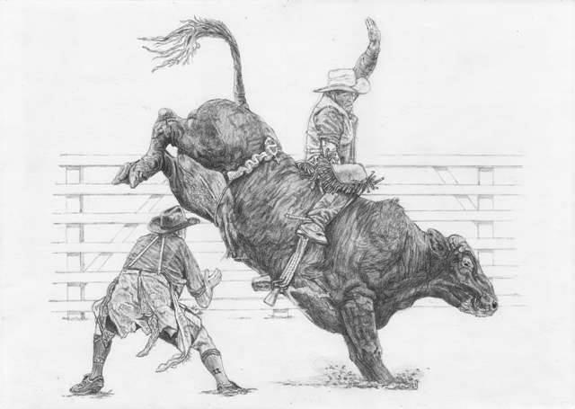 File:Bull Rider.jpg