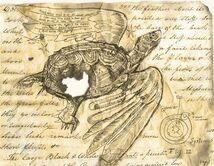 Turtle flying historical
