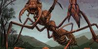 Ant, Giant