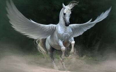 Pegasus1