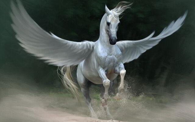 File:Pegasus1.jpg
