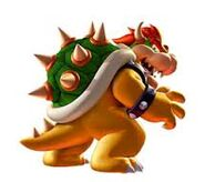 Another bowser photo
