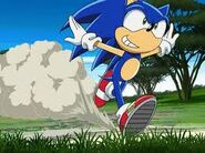 Sonic in the park