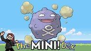 Mini24
