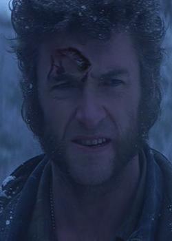 File:Wolverine Healing.png