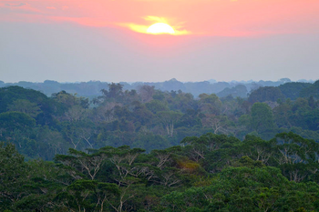 Sunset in Madre de Dios, Peruvian Amazon.png