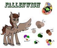 FallenWish Reference