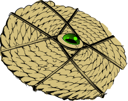 File:Rope Shield.png