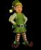 C193 Irreplaceable assistants i02 Christmas elf