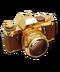 C046 Photographers Things i06 Gold Camera