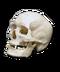 C039 Ghost town i02 Skull