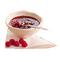 C376 Tea break i03 Raspberry jam