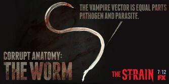 Corrupt-Anatomy-The-Worm-the-strain-fx-38617382-1024-512