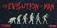 The-Strain-Season-3-Banner-The-Evilution-of-Man-the-strain-fx-39815830-1024-512