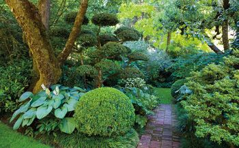 Daln Gardens