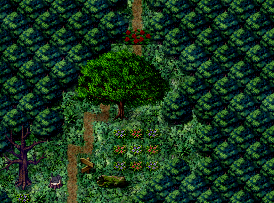 File:Witch's forest.png