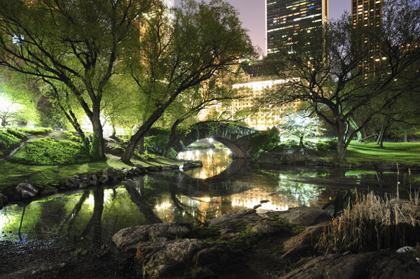 File:Central-park-at-night.jpg